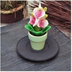 Фън Шуй Свещ - Орхидея (саксийка)