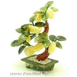 Фън Шуй Дърво на парите (нефрит,оникс,кварц, мрамор)