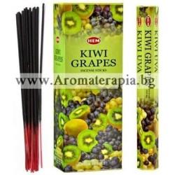 Фън Шуй Ароматни Пръчици - Киви и Грозде (Kiwi-Grapes) HEM Corporation